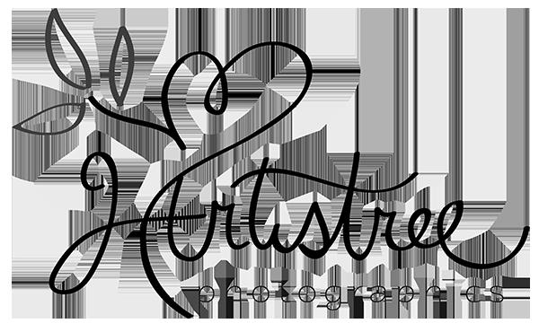 Hartistree Photographics Logo
